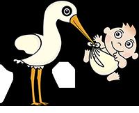 stork-1324371_1280
